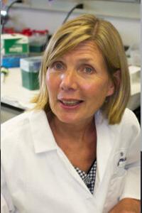 Hilakivi-Clarke, PhD